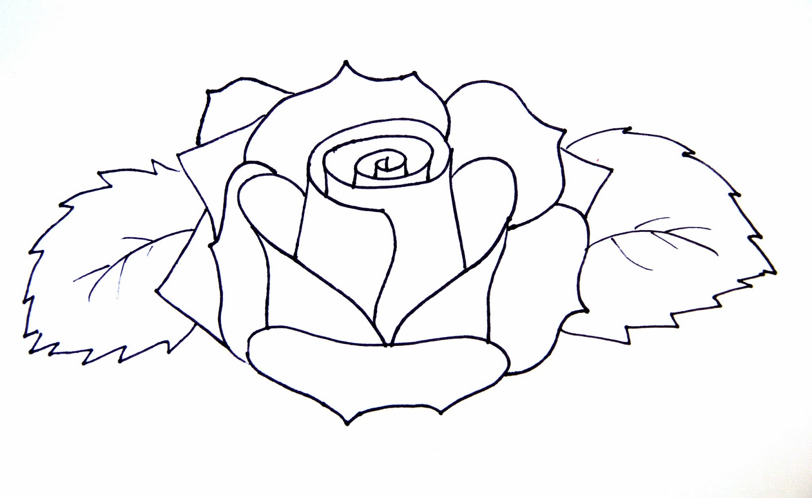 Rose Drawing Easy