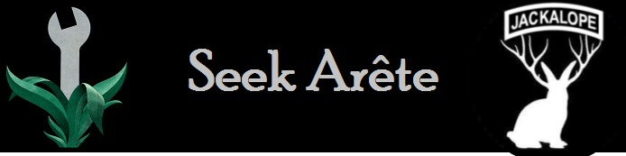 Seek Arete