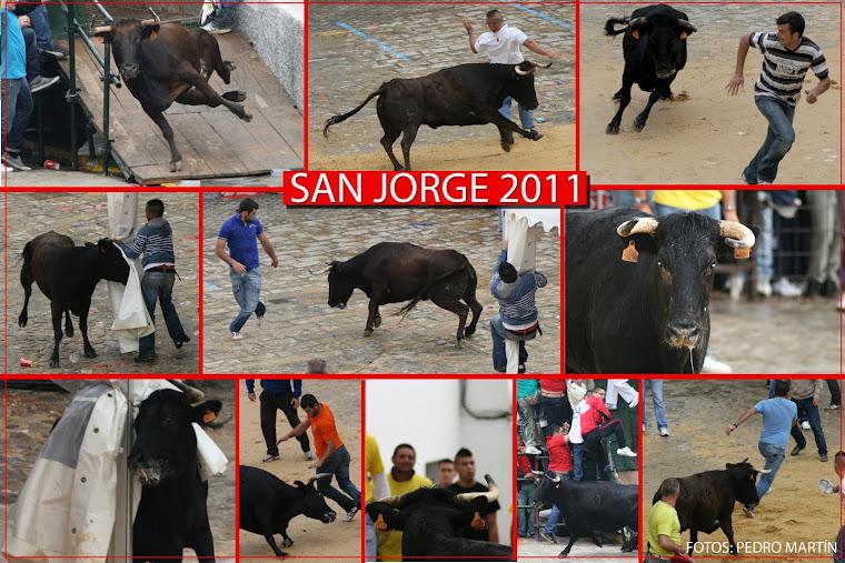 MEJORES FOTOS - DETALLE FIESTAS PATRONALES SAN JORGE 2011