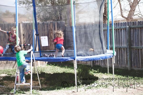 trampoliner til haven