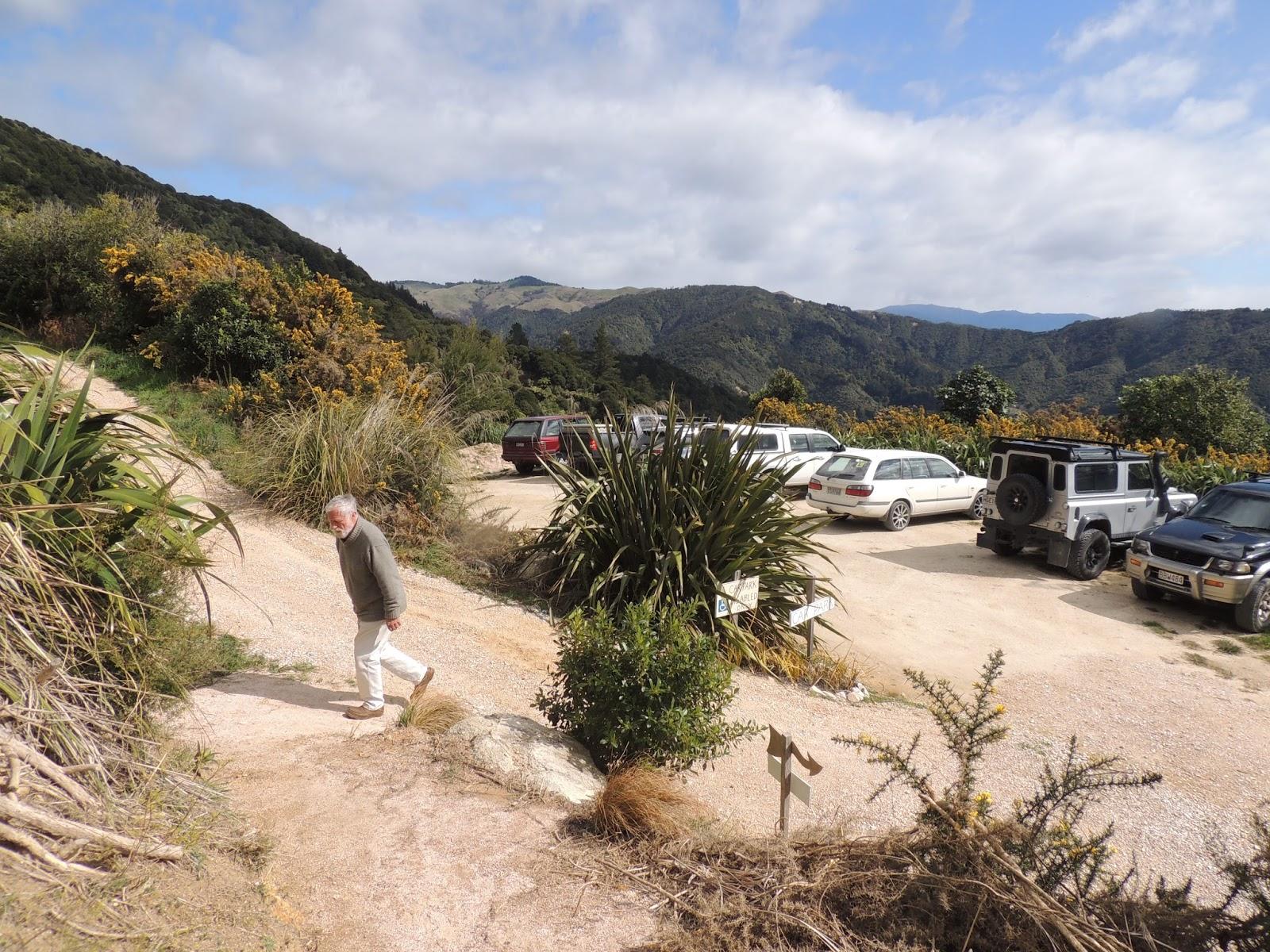 Beaches Near Abel Tasman