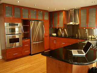 contemporary stainless steel kitchen cabinets pictures