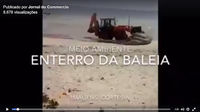 http://www.blogdofelipeandrade.com.br/2016/01/videoblog-prefeitura-de-goiana-enterra.html