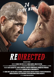 Redirected Poster