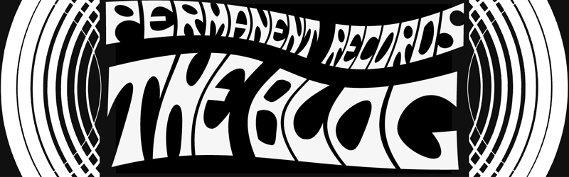 Permanent Records The Blog
