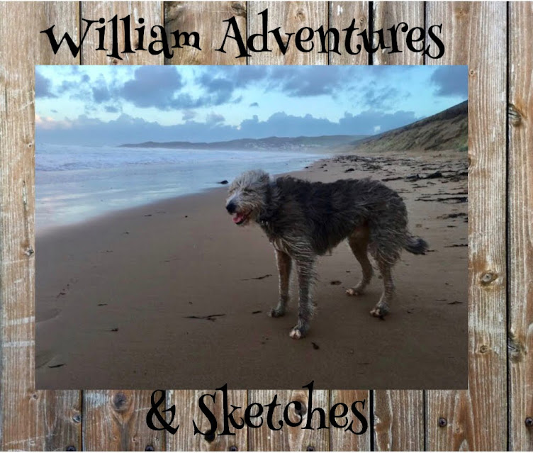William adventures & sketches
