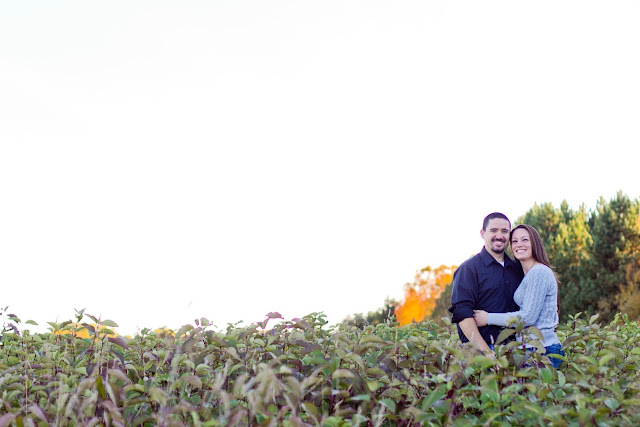 couple standing in field with lots of negative space