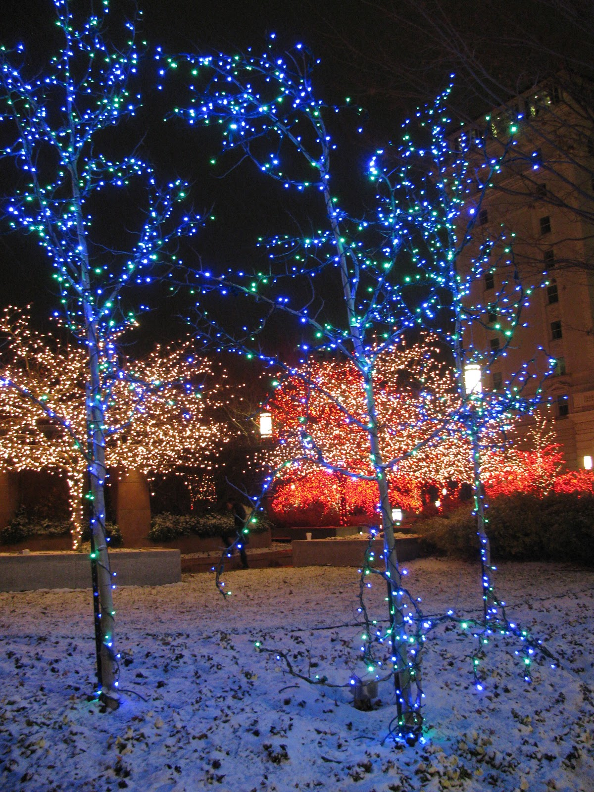 Exploring the American West: Christmas Lights of Downtown Salt ...