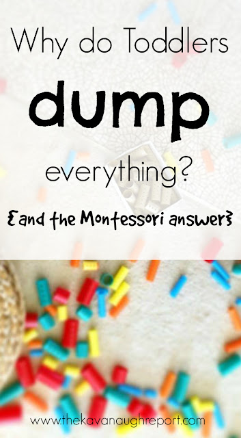 Why do toddlers dump everything? Some Montessori inspired answers for parents who find that all their children do is dump toys and materials and walk away.