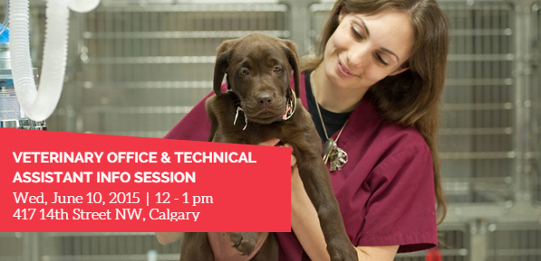 http://www.robertsoncollege.com/programs/business/veterinary-office-technical-assistant/calgary