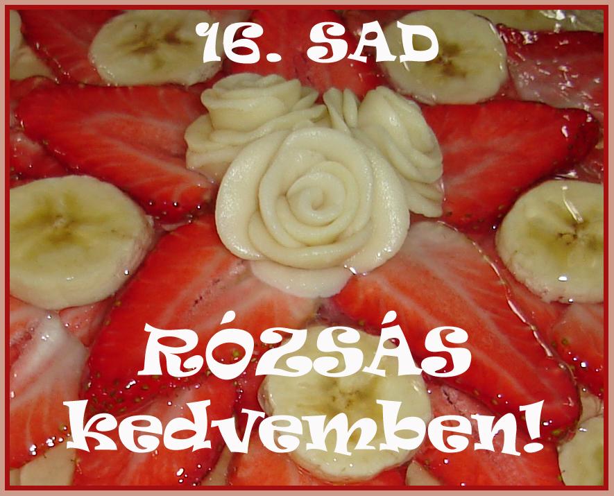 http://sunisuti.blogspot.hu/2013/07/16-sad-rozsas-kedvemben-osszefoglalo.html