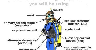Scuba Diving Diagram Wiring Diagram