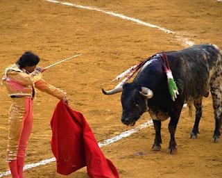 hot matador