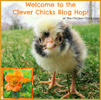 The Clever Chicks Blog Hop at The-Chicken-Chick.com