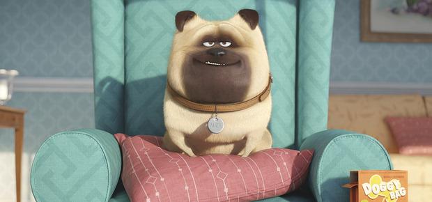 Primer tráiler de la animada 'Mascotas'
