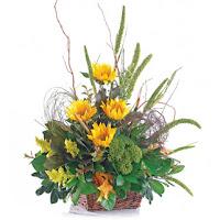 Autumn Basket Arrangements1