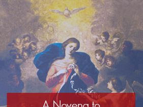 Please Pray With Us!  An Our Lady Undoer of Knots Novena for the Papal Visit