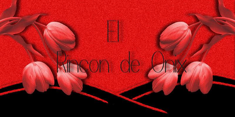 EL RINCON DE ONIX