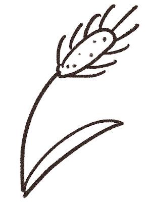 猫じゃらしのイラスト(花) モノクロ線画