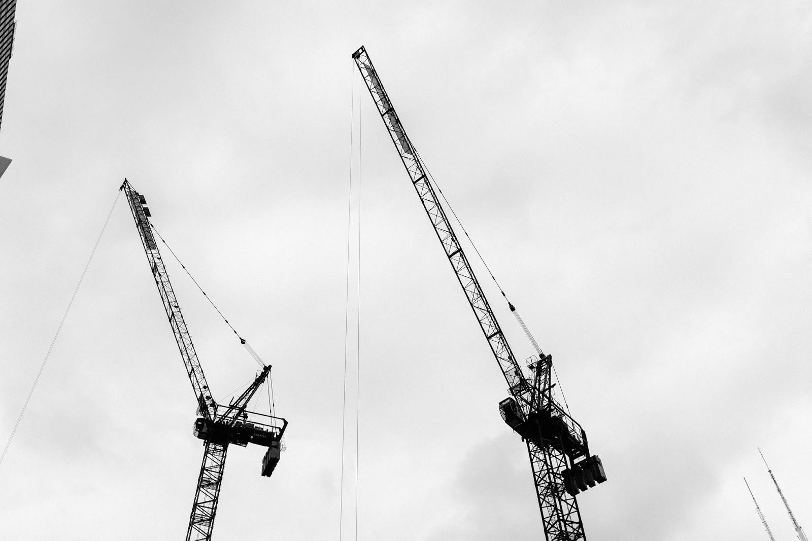 Cranes Chicago