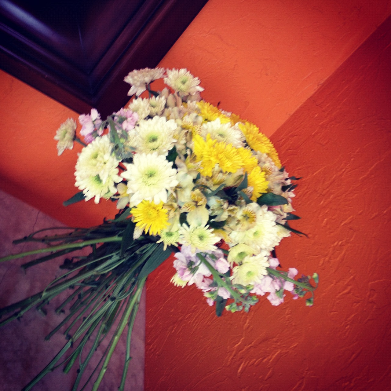On The Budget Flowers For Your House