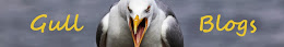 Gull Blogs