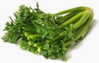Manfaat Saderi (Celery) Untuk Kesihatan