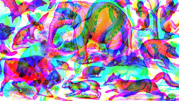 marialuisa design: jannelli e volpi