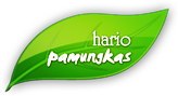 Hario Pamungkas