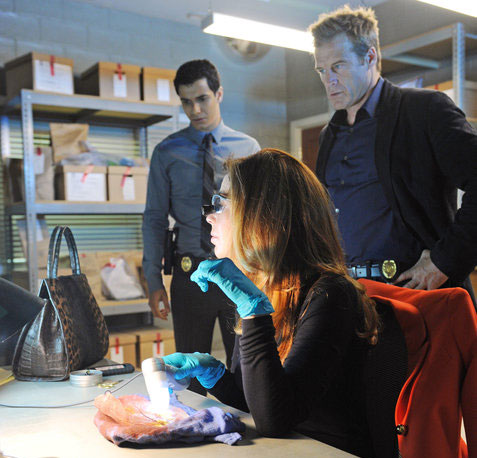 Will Body Of Proof Be Back In 2014