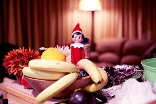 Elf on the Shelf adult