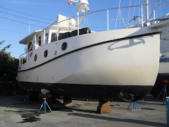 This is 'before'.  By next week, mew bottom paint, hull washed  and waxed!