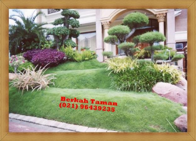 448719422 1 gambar tukang taman kolam dan taman