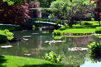 Gibbs Gardens, Monet Waterlily Garden
