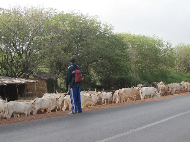 Carretera de Senegal