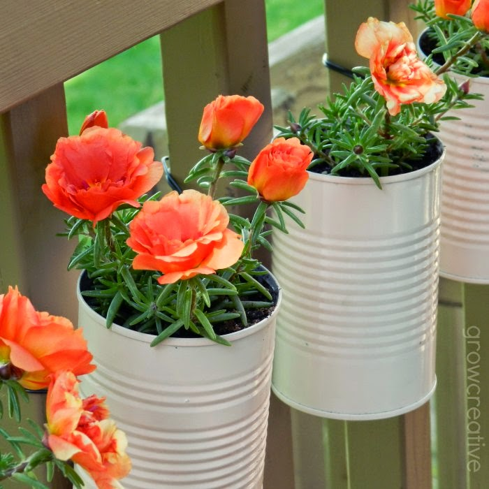 http://growcreative.blogspot.com/2014/05/vertical-tin-can-planters-tutorial.html