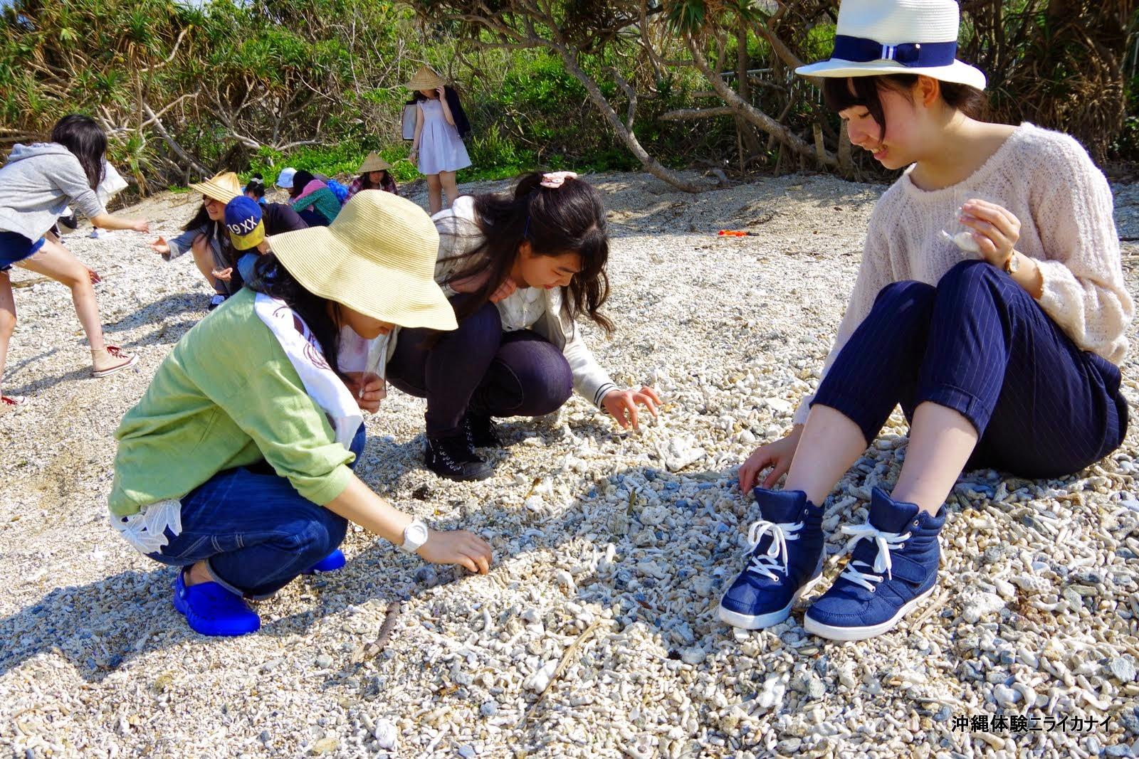 沖縄体験/観光ビーチコーミング