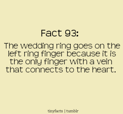 something borrowed fun fact friday