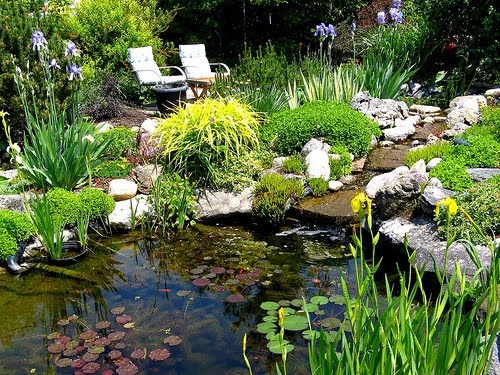 Pond liner blog save money on clarifying pond supplies for Garden pond materials