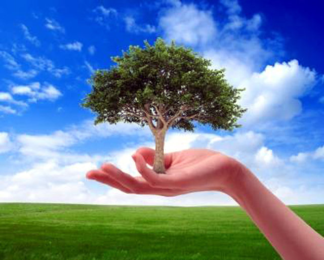 free essay on environment protection Researchomatic is the largest e-library that contains millions of free environmental issues essay topics & environmental issues essay examples for students of all protection environmental protection introduction environment protection refers to the process of protection of the natural atmosphere and environment.