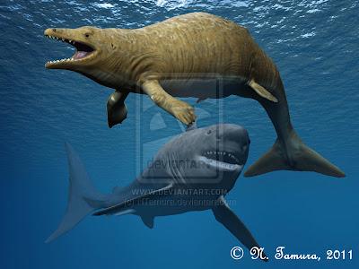 cetaceos de antes del dliuvio Aegyptocetus
