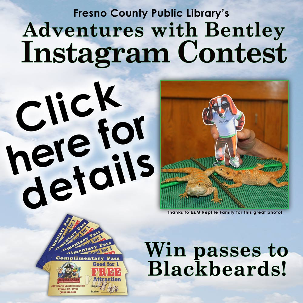 Adventures with Bentley Instagram Contest