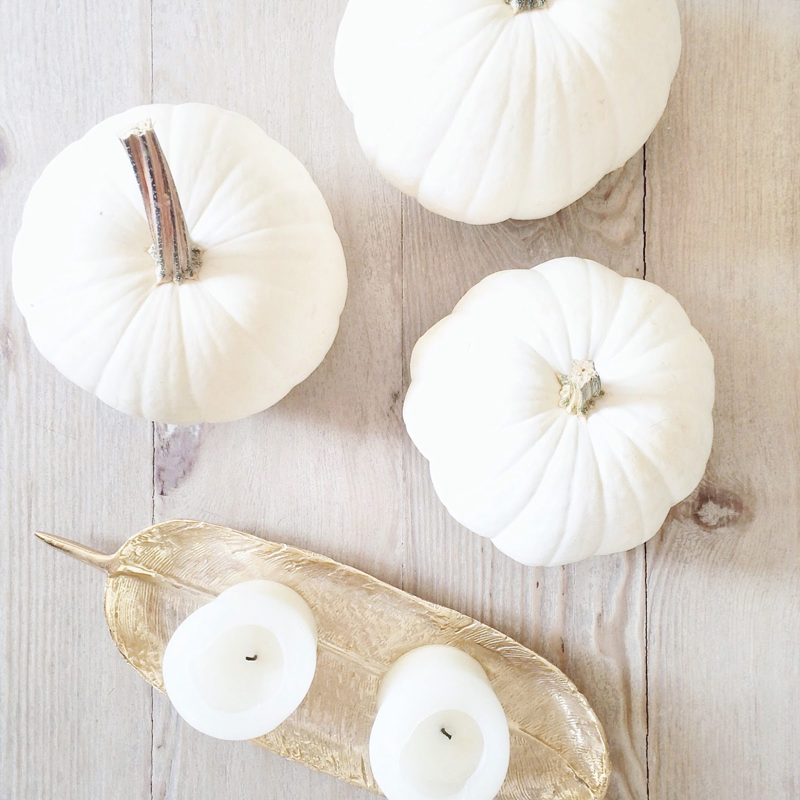 athena-gold-feather-tray-with-white-pumpkins