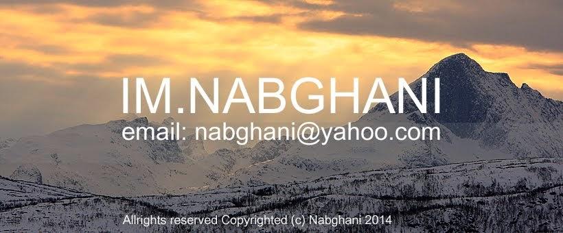 N Abghani