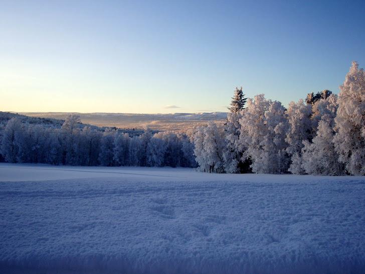 En av de vakreste vinterdagene