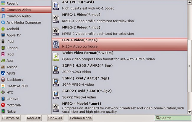 Windows Media Player compatible video format