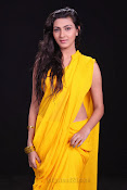 Neelam Upadhyay photos in Yellow saree from Action-thumbnail-2