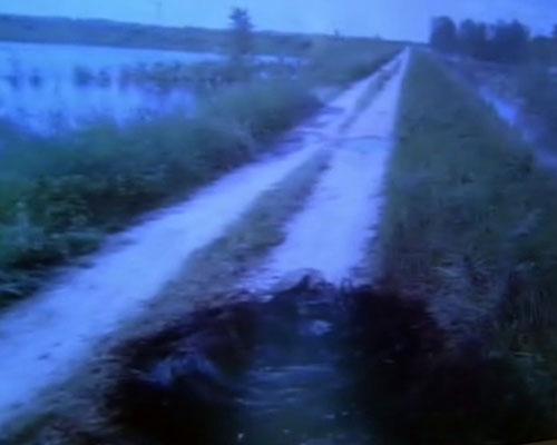 Фото наводнения в Польше