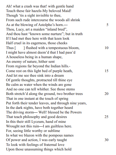 the poem nutting by william wordsworth essay William wordsworth was a revolutionary man who sought to create poetry that was personal analysis on william wordsworth and his poem michael (2004, april 15) but its thesis is very weak and the essay largely summarizes the poem.