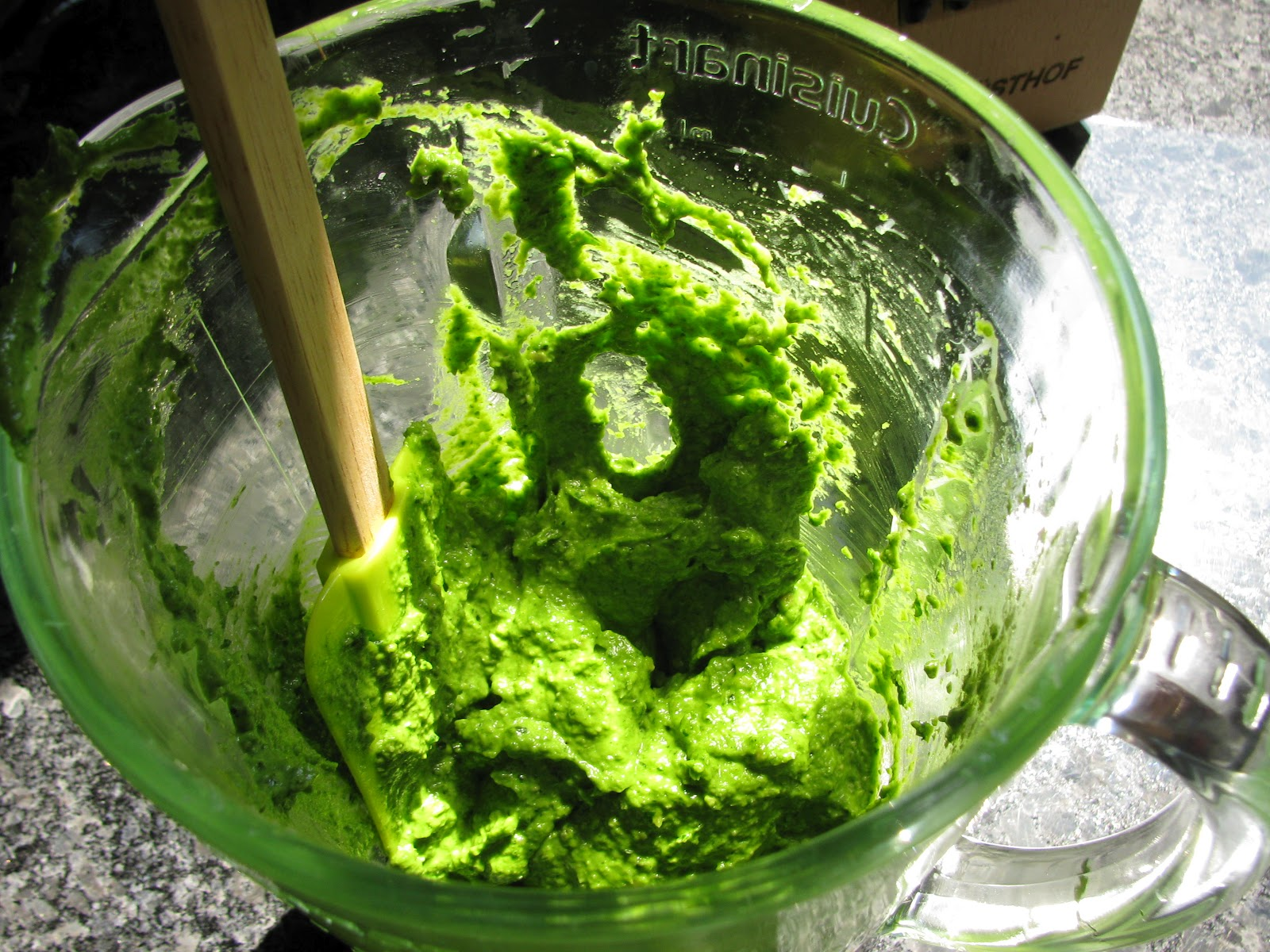 Kid Cultivation: Nut-free Kale Pesto
